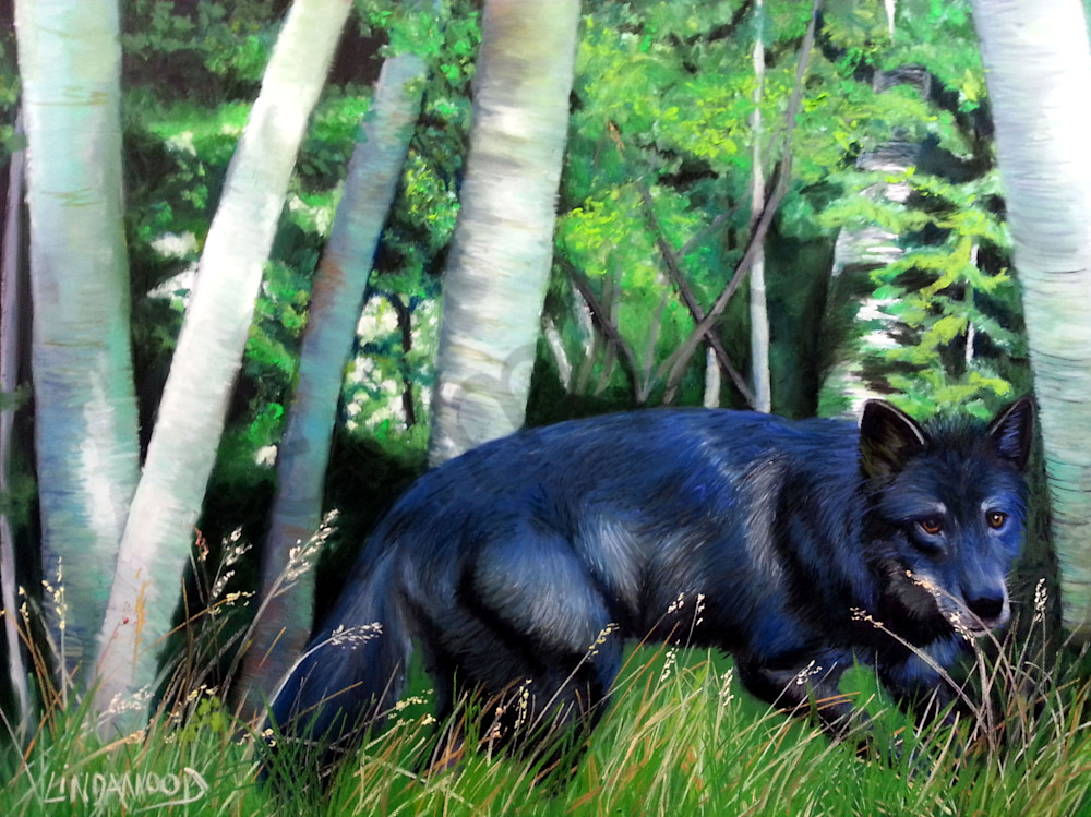 Black Wolf Stealth