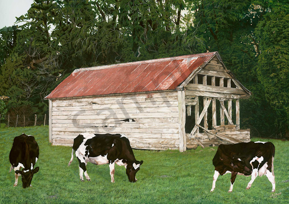 The Old Cow Shed