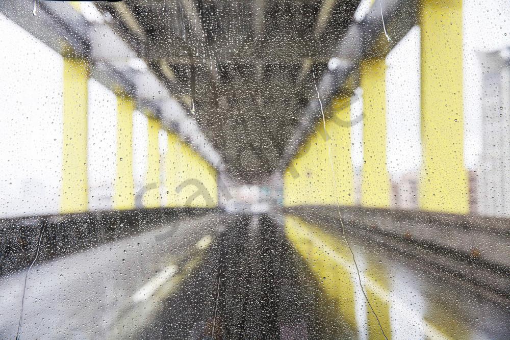 Abstract  Taipei Rain
