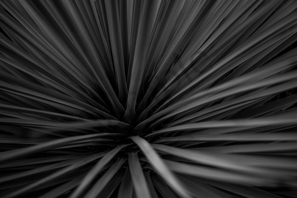Flax Horizontal Drk