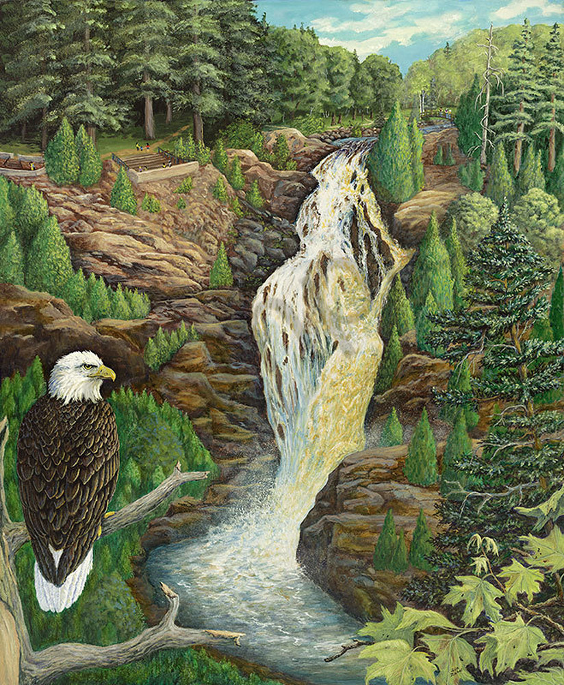 """Eagle Eyes On Big Manitou Falls"" fine art print by Sue Zabel of Artistic Memories."