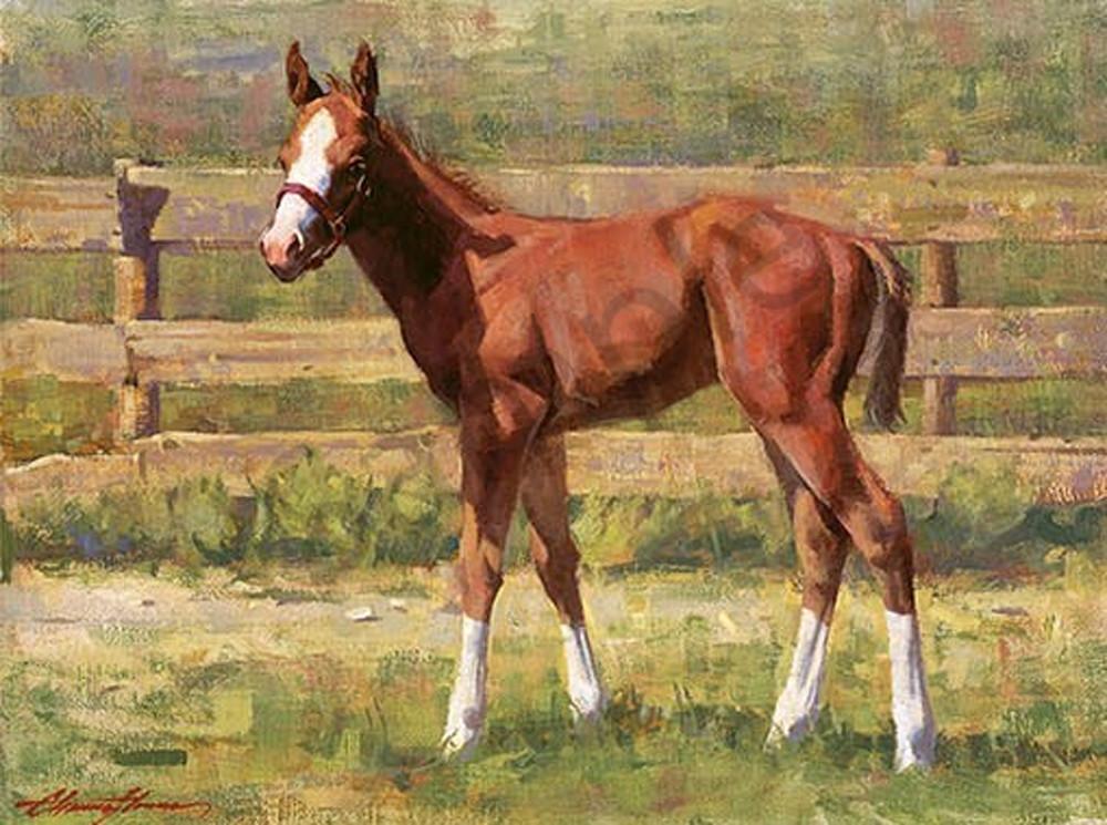 Mr. Longstockings | Southwest Art Tucson Gallery | Horse Painting