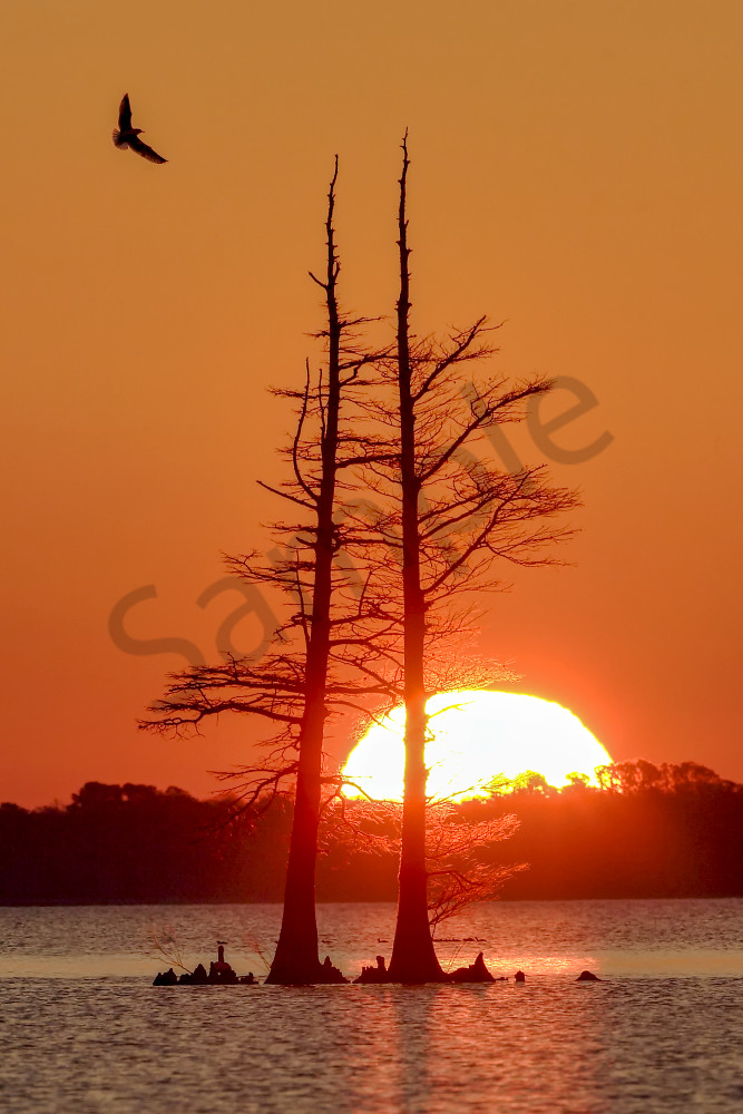 Sunrise Photos | Robbie George Photography