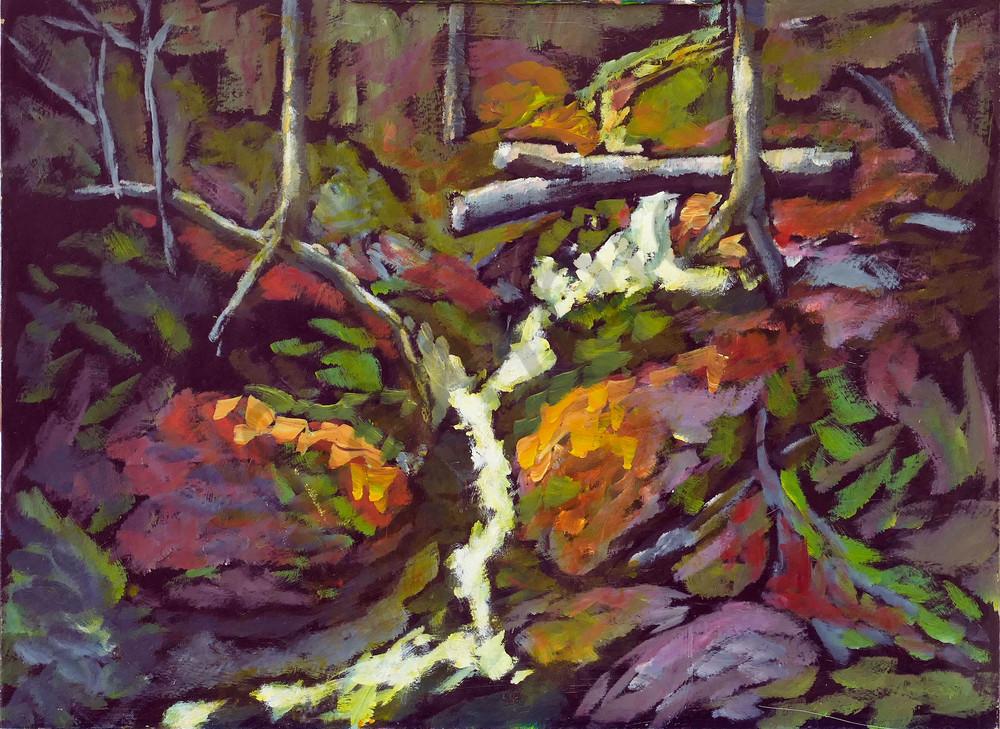 Bright Stream In Dark Woods Art   Keith Thirgood