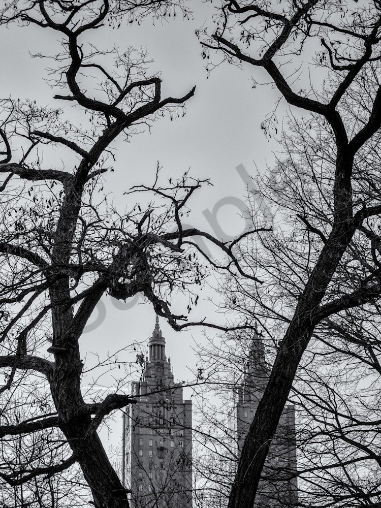 Trees And Buildings   Central Park, Nyc Photography Art | Namaste Photography