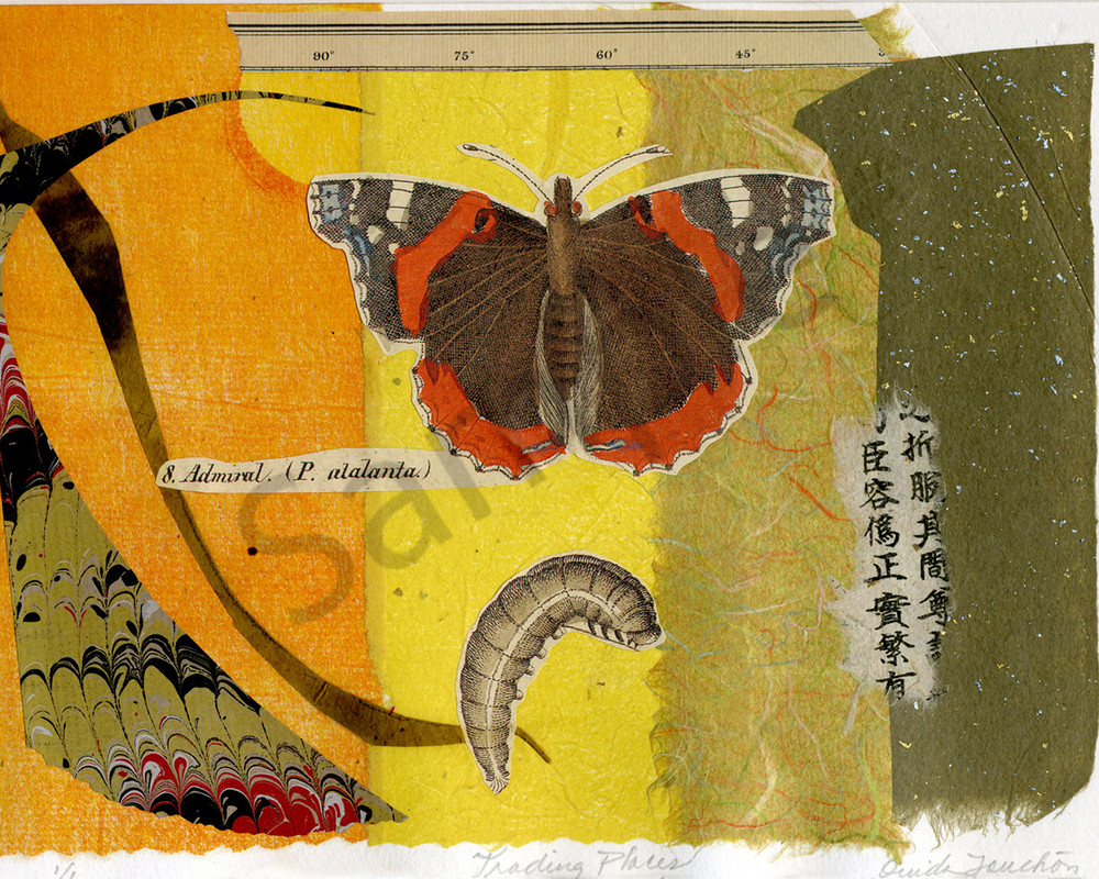 Trading Places, fine collage art for sale by Ouida Touchon, fine artist from New Mexico, butterfly collage using chine colle technique, signed by the artist