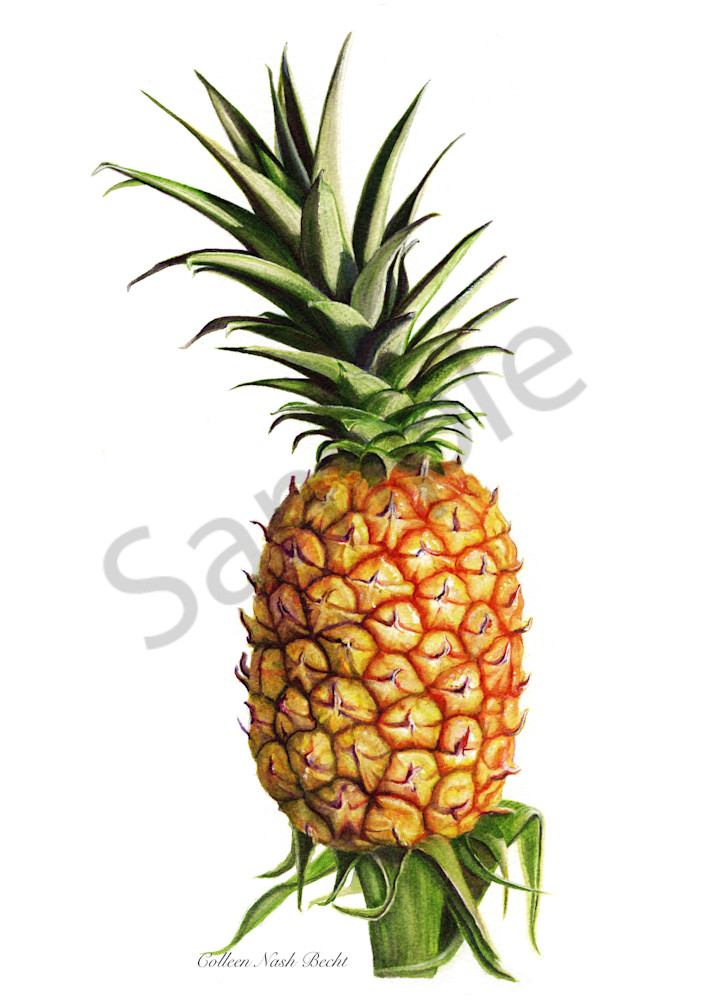 PineApple art for your home or office.
