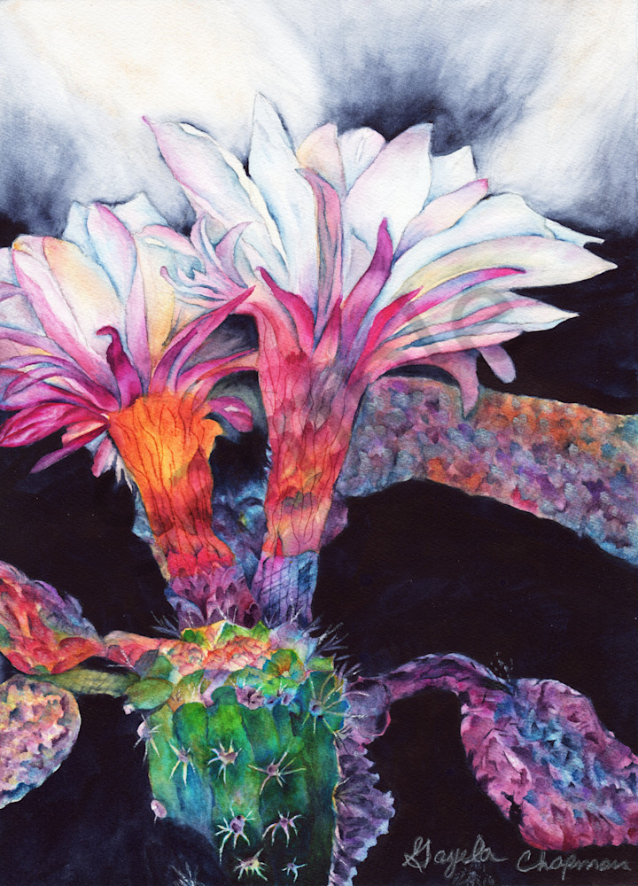 Cereus Cactus art by Gayela's Premiere Watercolor|Main Store
