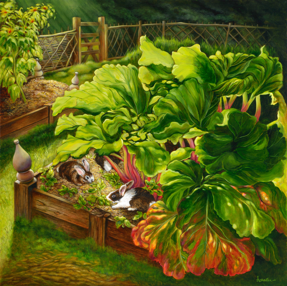 """Morning Feeding   Rabbits And Rhubarb"" Art   Bonnie Sailer Fine Art"