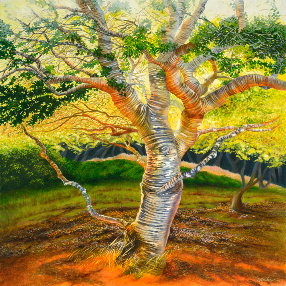 """Carmel Valley Oak"" Art 