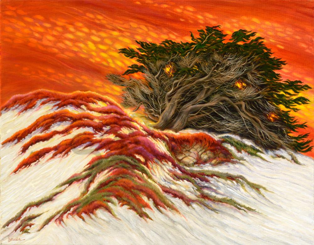 """Cypress And Sand Dunes"" Art | Bonnie Sailer Fine Art"