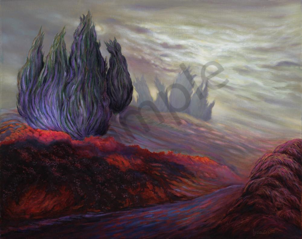 """""""Cypress Trail In The Mist""""   """"Dream Series""""  Art   Bonnie Sailer Fine Art"""