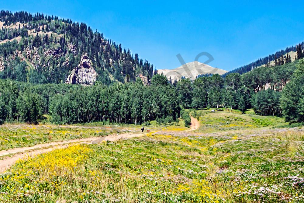 Country roads through alpine meadows-shop art/masonandmasonimages.com