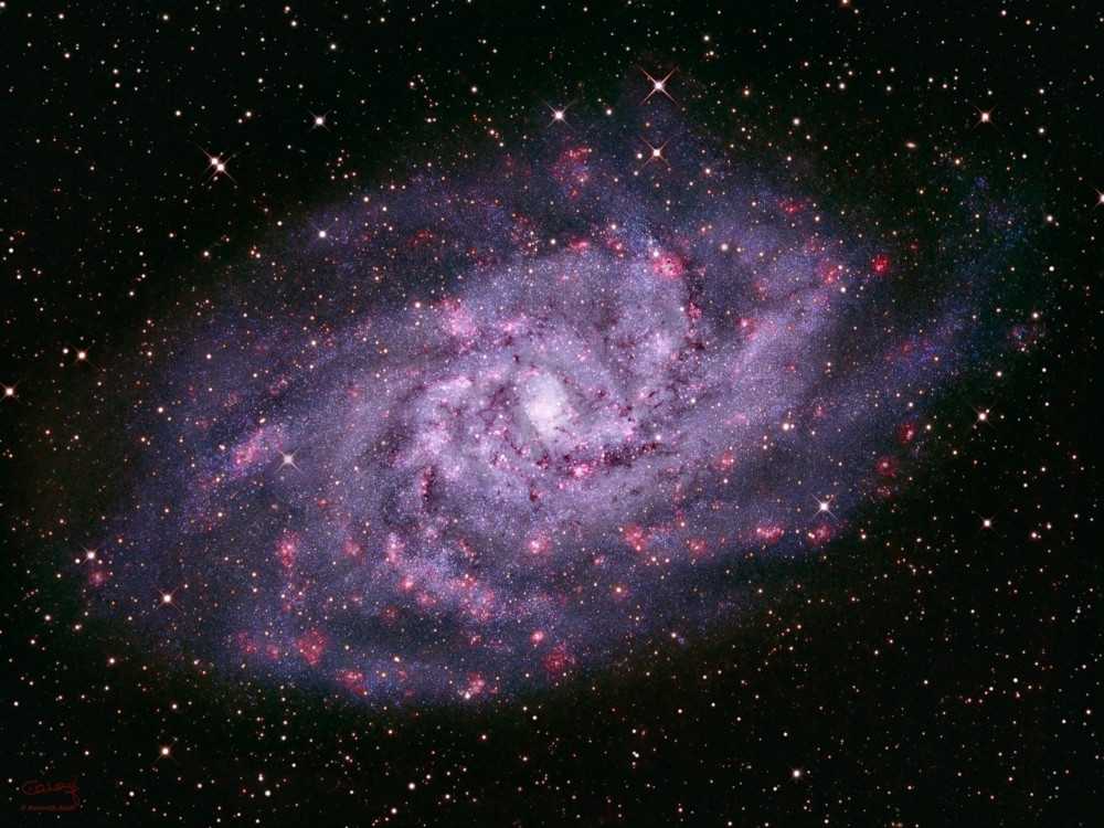 Triangulum Galaxy Photography Art | Dark Sky Images