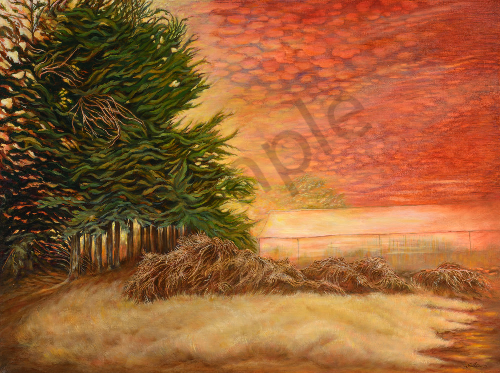 """Watsonville Hothouse"" Art | Bonnie Sailer Fine Art"