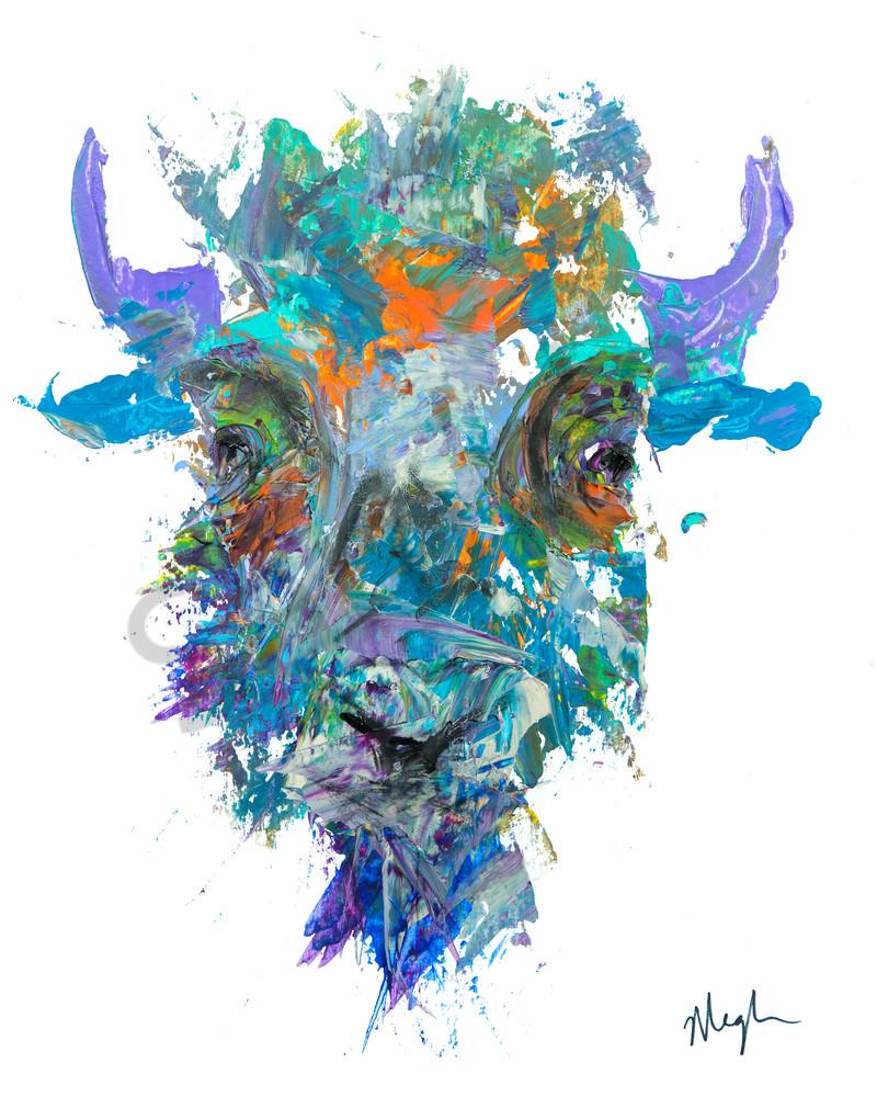 Mr Cool / Bison