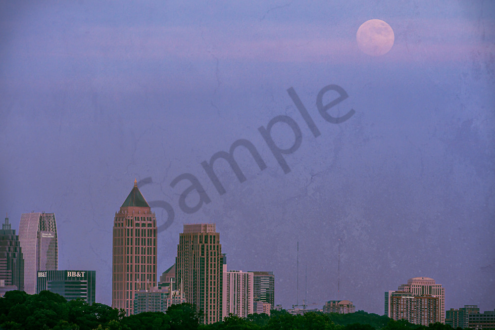 Moonrise Over the City in the Trees | Susan J Photography