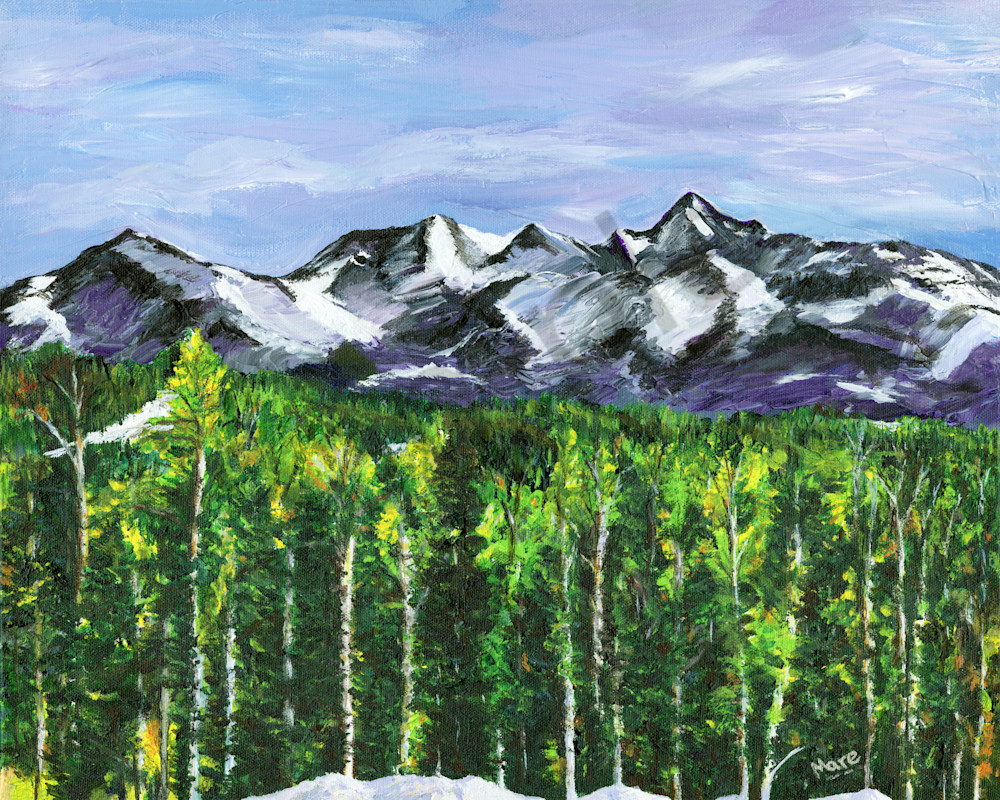Acrylic and palette knife painting of the San Juan mountains near Telluride, CO by artist Mary Anne Hjelmfelt