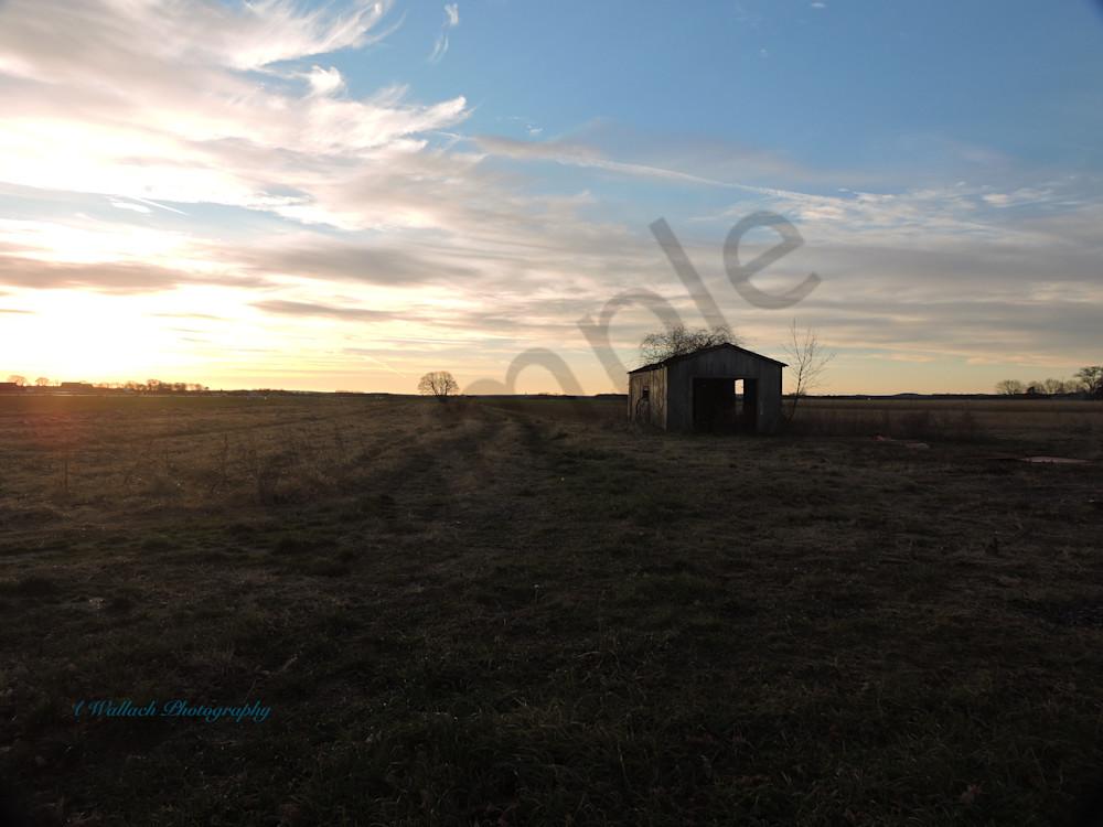 Sunrise Over The Fields Art | East End Arts