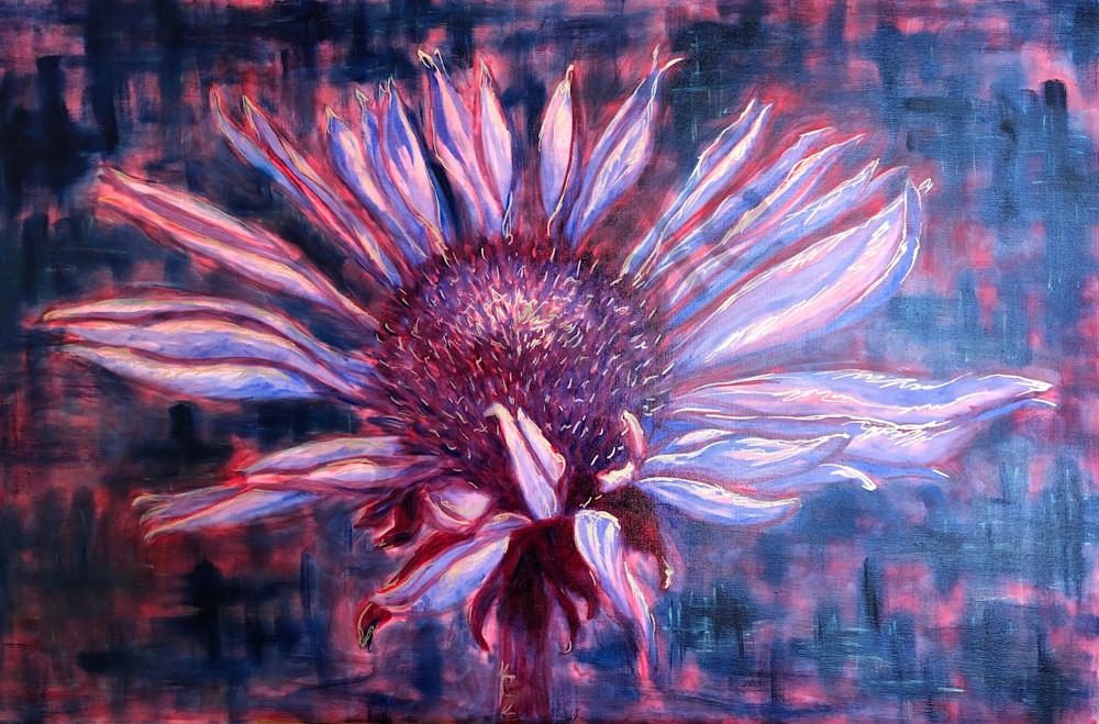 Cone Flower In Bloom Art   RPAC Gallery