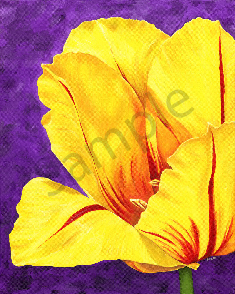 Acrylic painting on canvas of a bright yellow tulip with red stripes against a purple background by Mare's Art.