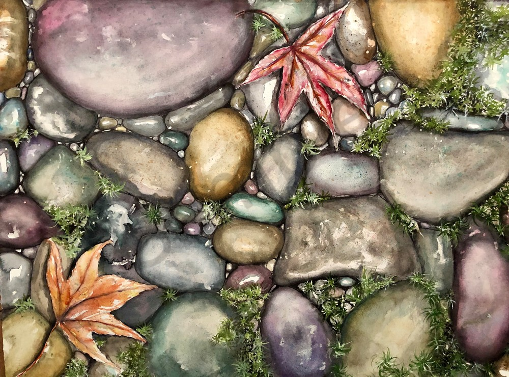 River Rocks and Maple Leaves