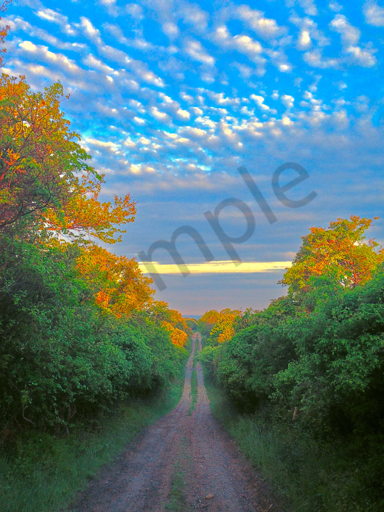 Road to the Clouds|Fine Art Photography by Todd Breitling