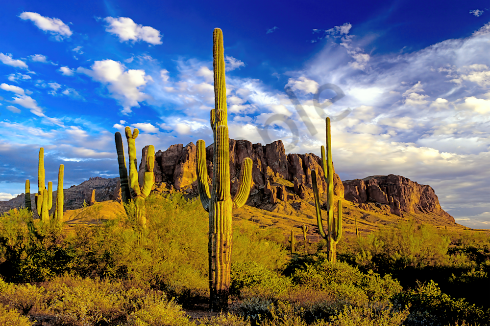 Sonoran Desert, Lost Dutchman's Gold Mine, Old West, Siphon Draw, Tonto National Forest, Flatiron, Peralta Trailhead, Arizona