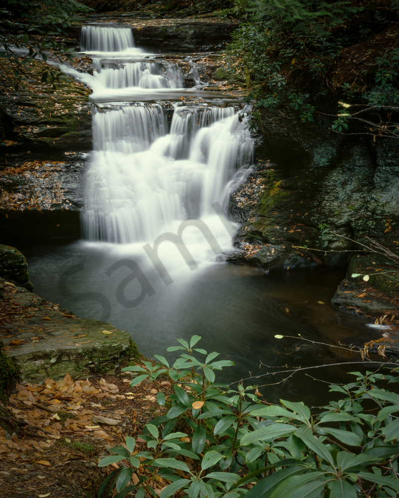 Fine Art Print | Dingmans Falls