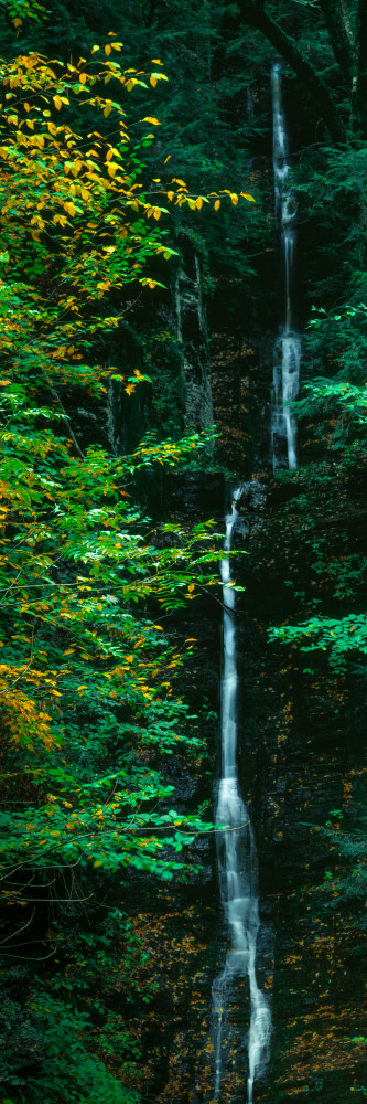 Fine Art Print | Silver Thread Falls as vertical panorama