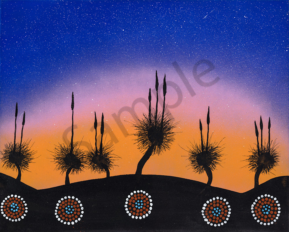 Grass Trees at sunset