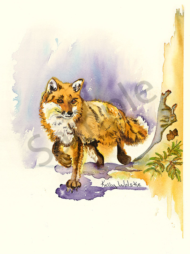 """Handsome Fox"" fine art print by Kelly Wolske."