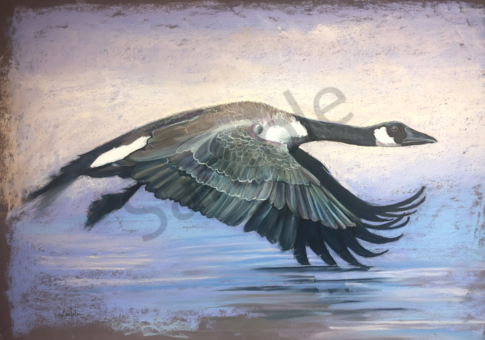 Circling To Fly South  Art | Kelly Bandalos Studios
