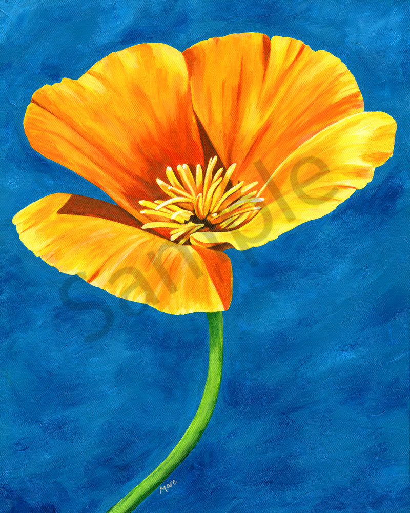 """""""Radiance"""" a brightly painted artwork by Mary Anne Hjelmfelt of a gold poppy flower on a blue background."""