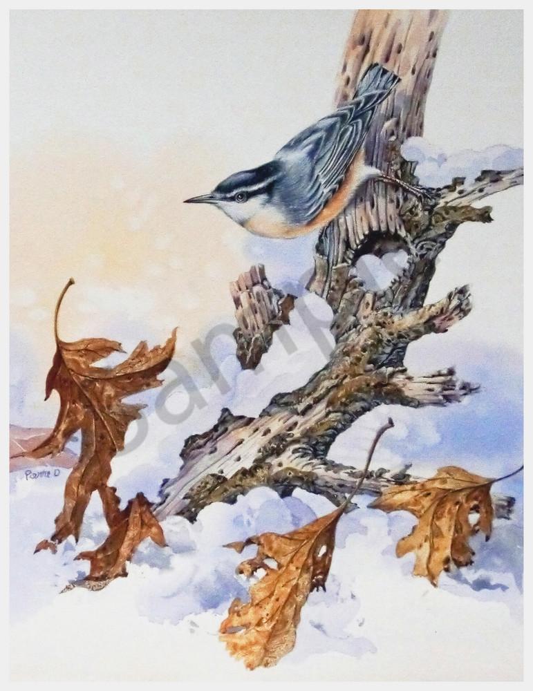 """Nuthatch"" by Colorado Artist Jean Pierre DeBernay | Prophetics Gallery"