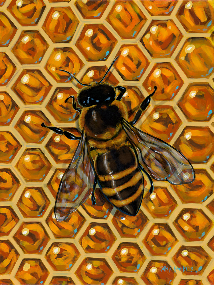 Honey bee on honeycomb painting