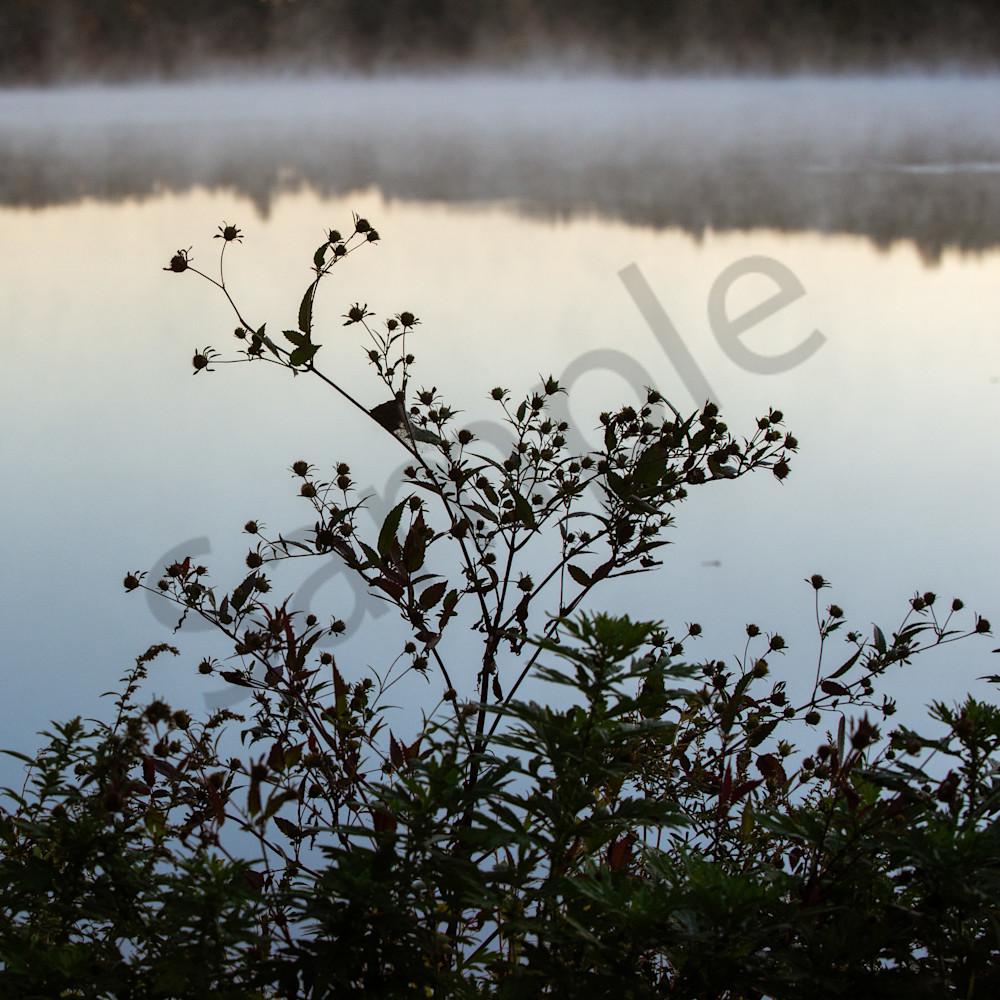 Morning Silhouette Photography Art | Kim Bova Photography