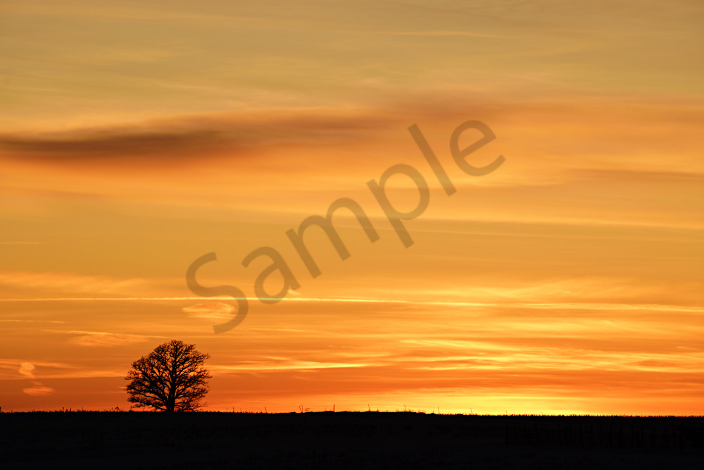 Winter Sunset Photography Art | LHR Images