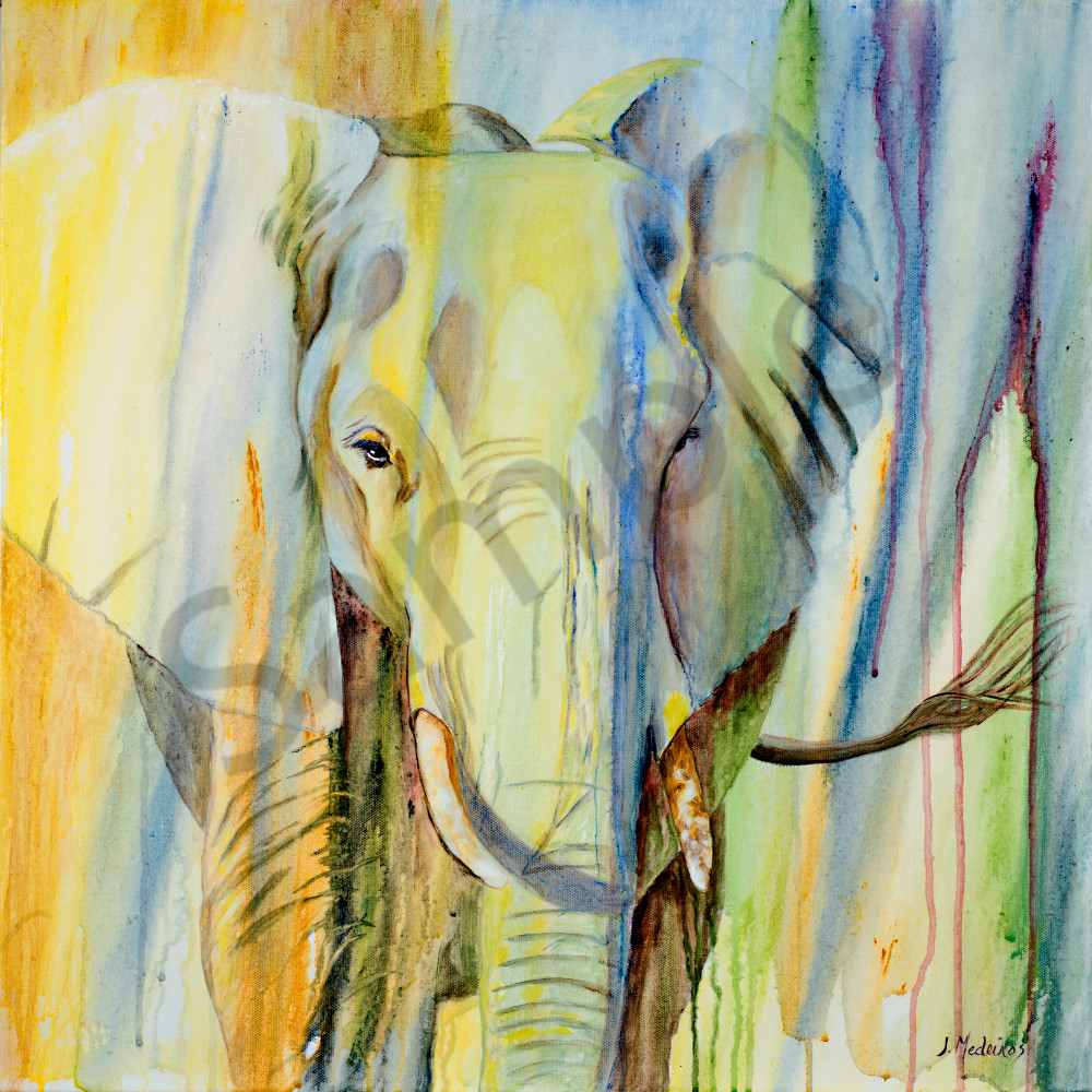 Elephant Of Timbavati Art | J. Medeiros Fine Art