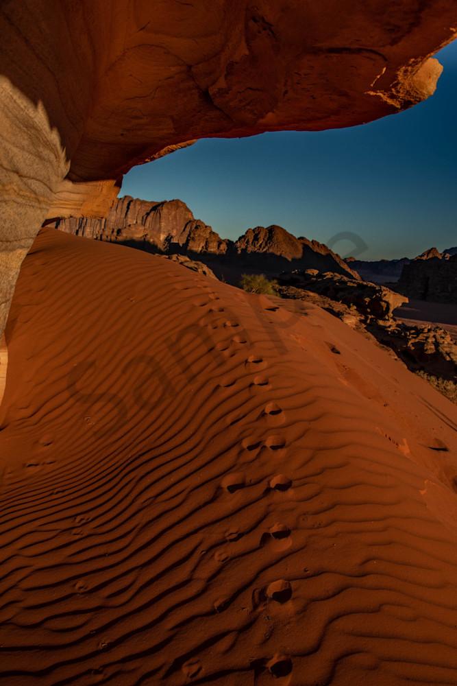Wadi Rum dune fox tracks