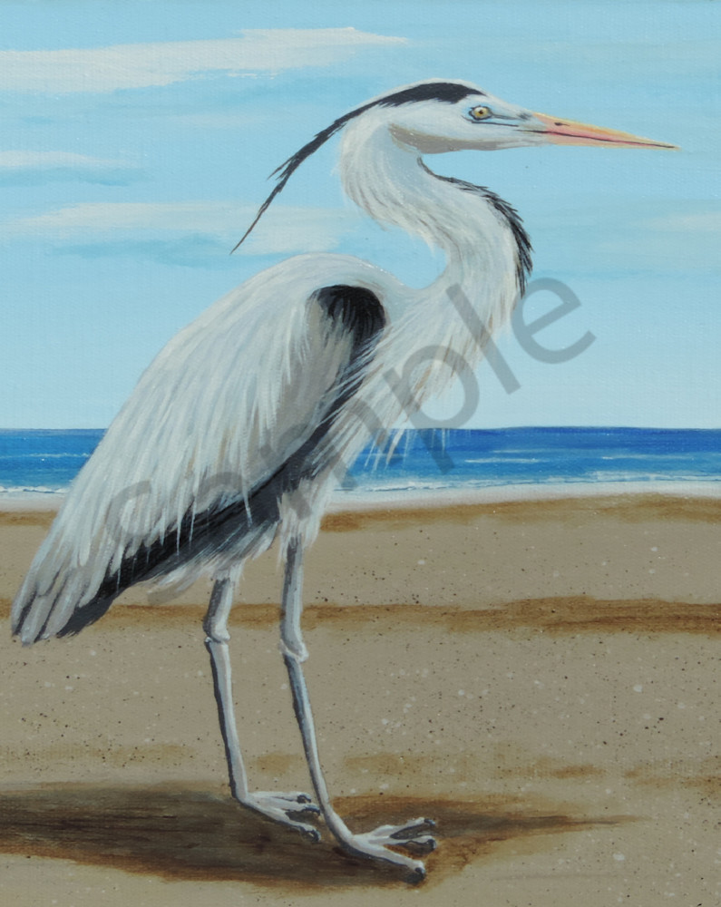 Blue Heron Art | Shore Paintings