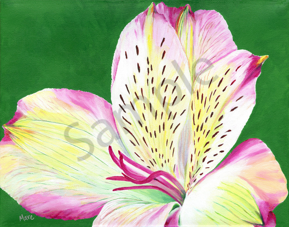 """""""Abundance"""", an acrylic painting of the Alstroemeria flower by artist Mary Anne Hjelmfelt. Great floral art for the home or office decor."""