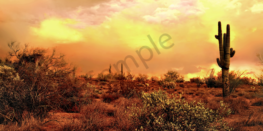Art Print Superstition Wilderness Desert Afterglow