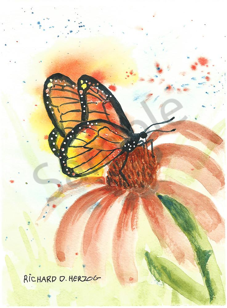 Butterfly 3 Art   Cincy Artwork