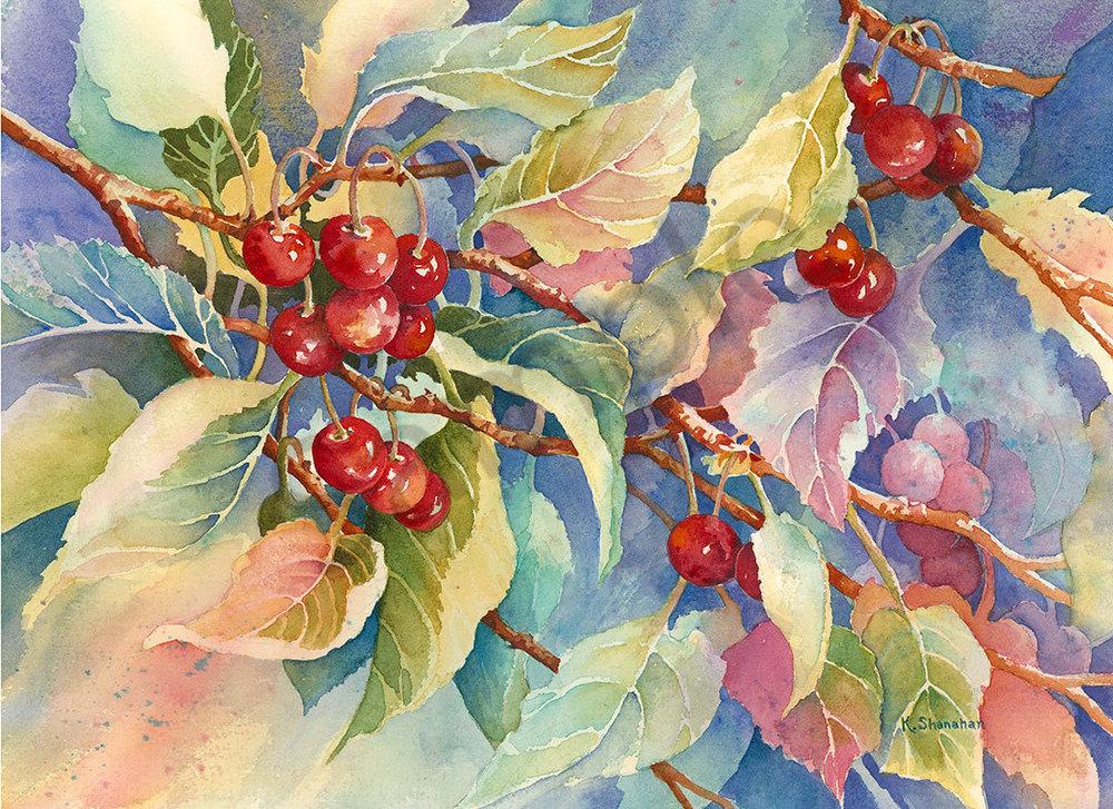 Cherry Delight fine art print by Karen Shanahan.