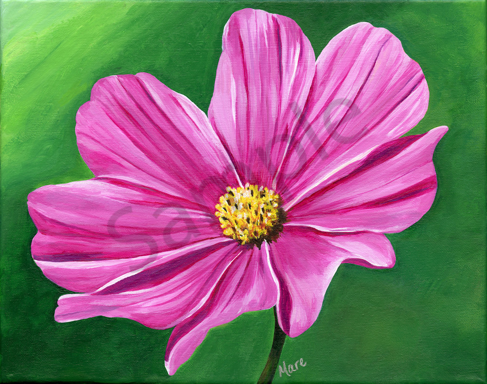 """""""Harmony"""" acrylic artwork by Mary Anne Hjelmfelt of a pink Cosmos flower."""