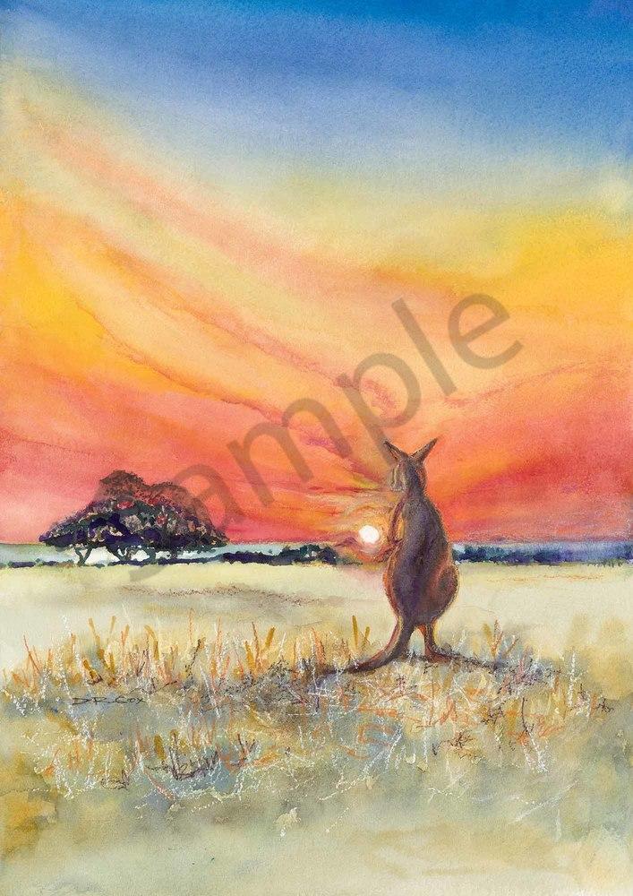 Bambi at Bremer Bay