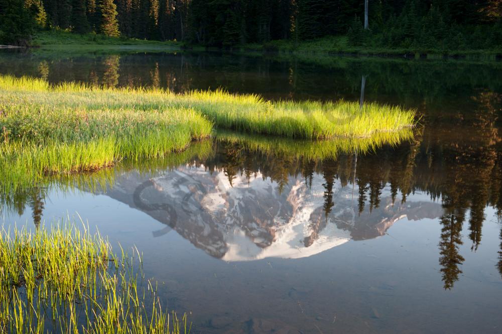 Mt. Rainier reflecting into a small lake.