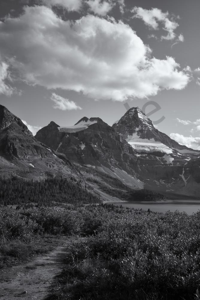 The Path To The Lake Photography Art   Namaste Photography