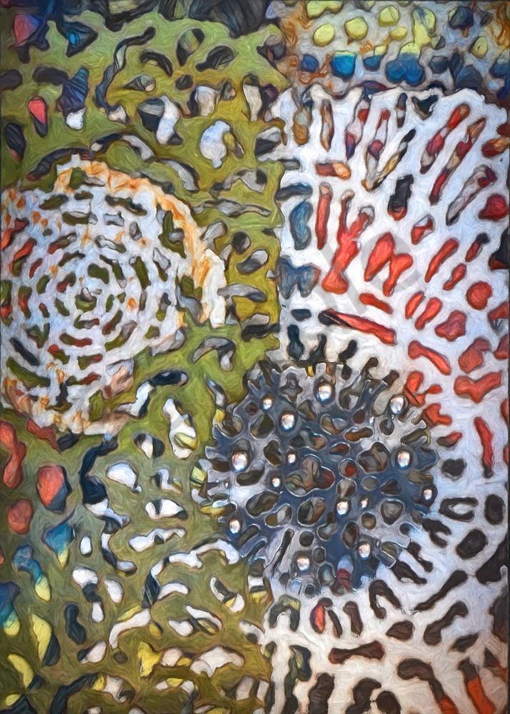Radiolaria Series Mixed Media Print #01 Art   smalljoysstudio